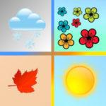 Véritables 4 saisons